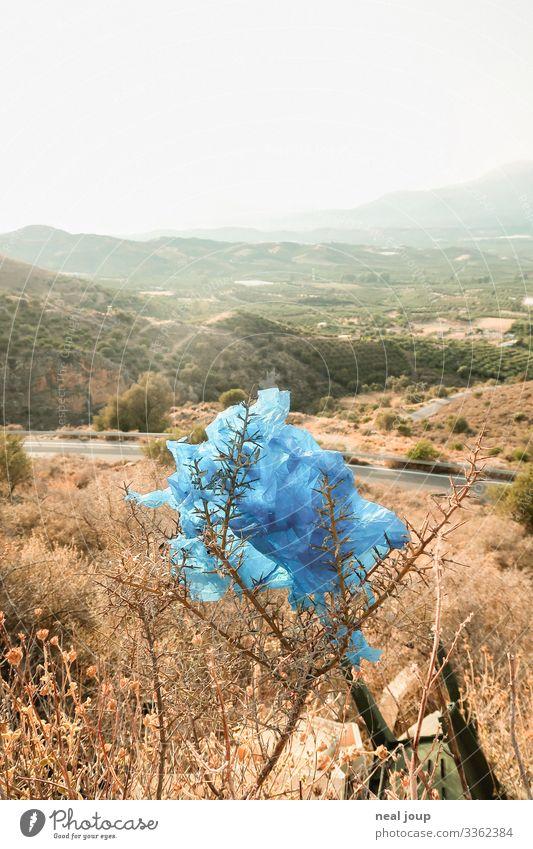 Elegantly wasted -VII- Shopping Luxury Environment Nature Landscape Bushes Greece Packaging Plastic bag Trash Hang Sustainability Trashy Gloomy Blue Ignorant