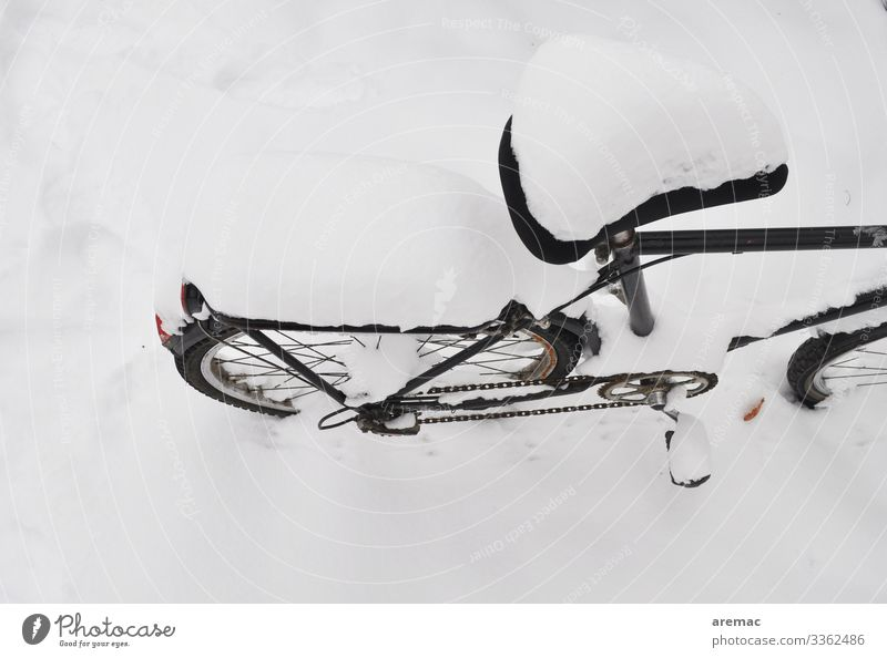 Fahrrad im Schnee Winter Snow Transport Bicycle Freeze Cold Colour photo Black & white photo Exterior shot Deserted Copy Space top Copy Space bottom Day