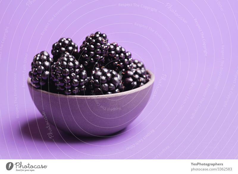 Blackberries in a bowl on purple background Fruit Dessert Organic produce Delicious Natural Berries Blackberry blackberry fruits bowl of blackberries colorful