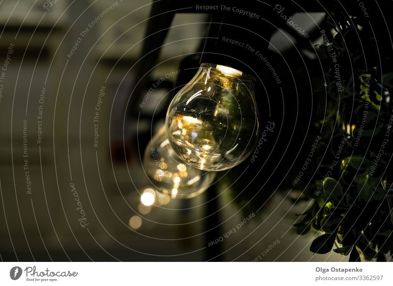 Sparkling light bulb on black background Abstract Art Background picture Black Bright Electric bulb burn burning Feasts & Celebrations christmas