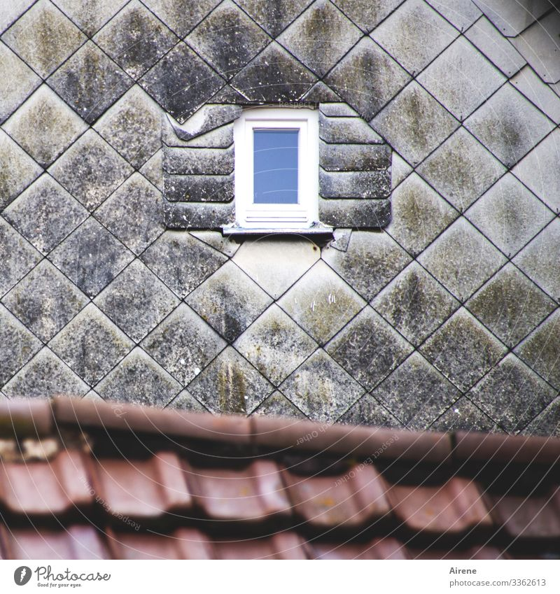 sort of fits Town Old town House (Residential Structure) Facade Window Roof Cladding Slate Tiled roof Hollow Diminutive Hint Fraud Shutter Exceptional Blue Gray