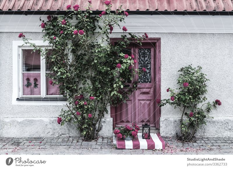 Picturesque house entrance decorated with roses Beautiful Summer House (Residential Structure) Garden Gardening Flower Rose Village Town Building Architecture