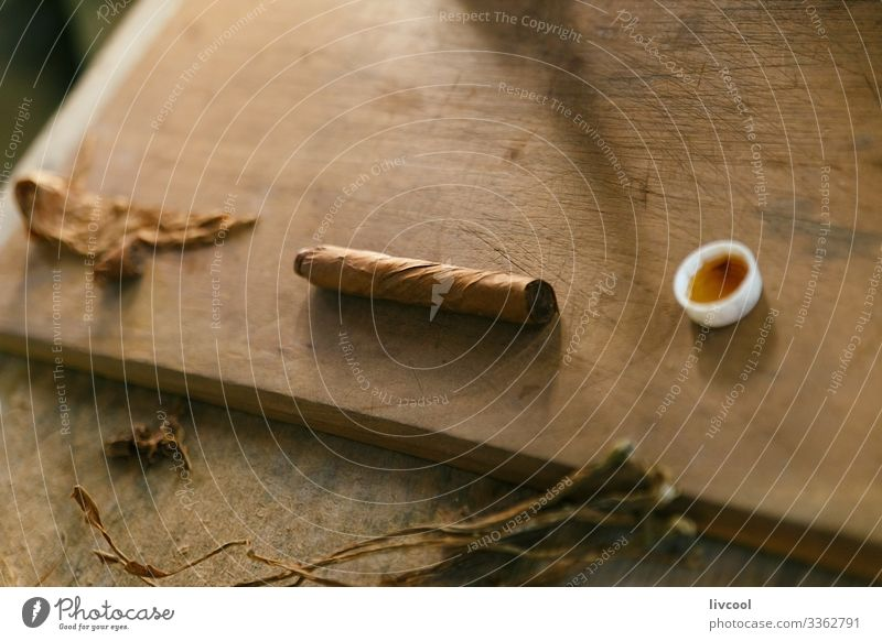 making cigars , vinales - cuba Lifestyle Island Table Man Adults Hand Nature Leaf Village Town Wood Make Authentic Uniqueness Brown Cuba Cuban people Cigar
