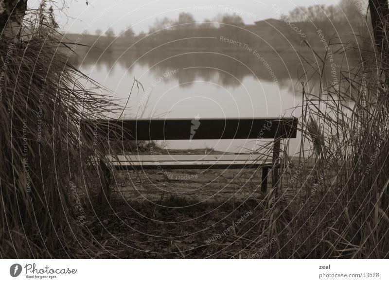 Nature Calm Autumn Lake Fog Bench Pond