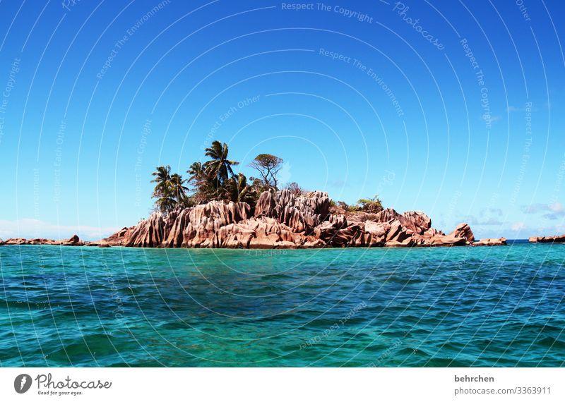 Small but fine Sunlight Contrast Day Deserted Exterior shot Colour photo Rock Praslin turquoise Paradise Saint-Pierre Palm tree Dream island Seychelles