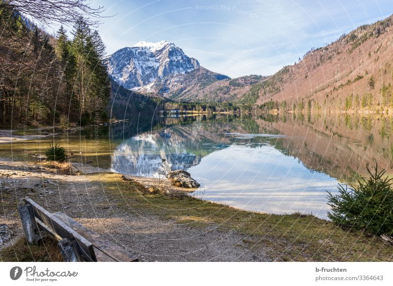 Mountain lake in Salzkammergut Hiking Environment Nature Landscape Autumn Winter Beautiful weather Rock Alps Snowcapped peak Lakeside To enjoy Freedom