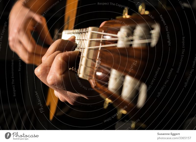 guitar playing Make music Passion Music Musician Musical instrument Artistically talented Guitar Guitarist Guitar neck Guitar string Play guitar Guitar position
