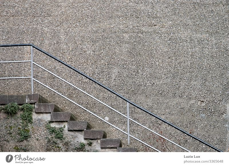 Stairs, up Moss Foliage plant Town Wall (barrier) Wall (building) Lanes & trails Stone Concrete Old Brown Gray Might Massive Steep Colour photo Subdued colour