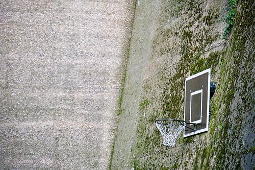 Baketball Lifestyle Leisure and hobbies Playing Basketball Net Sports Ball sports Moss Town Building Wall (barrier) Wall (building) Concrete Cool (slang) Above