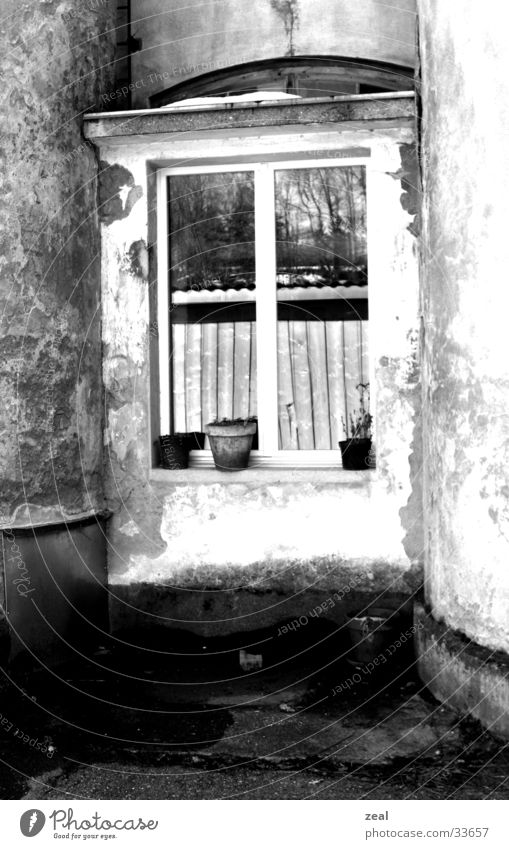 Old Window Architecture Living or residing Hide Flowerpot Industrial district
