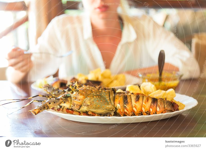 Grilled lobster served with potatoes and coconut sauce. Seafood Vegetable Eating Lunch Dinner Plate Vacation & Travel Ocean Table Restaurant Woman Adults Animal