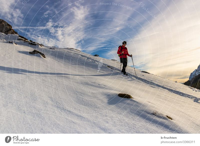 winter hike Leisure and hobbies Winter Snow Winter vacation Mountain Hiking Fitness Sports Training Woman Adults 1 Human being Nature Landscape Sky Clouds