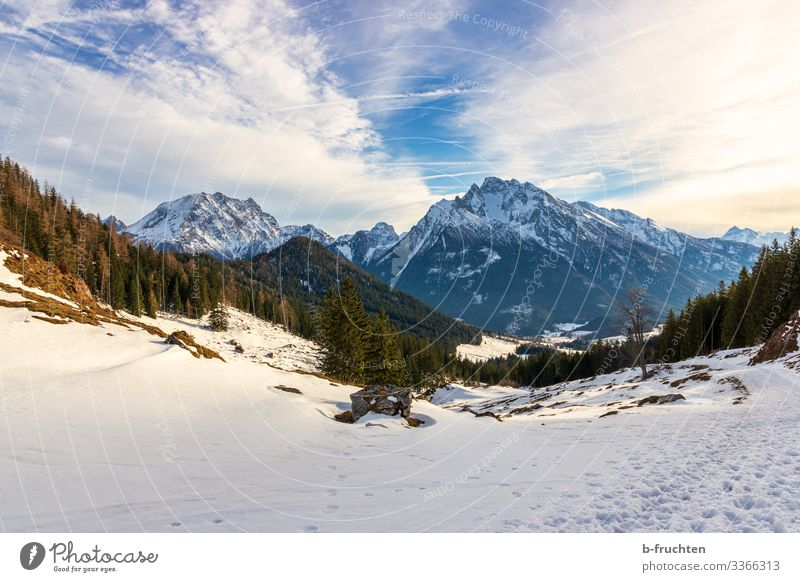 Berchtesgaden Alps Leisure and hobbies Vacation & Travel Tourism Adventure Far-off places Freedom Mountain Hiking Nature Landscape Winter Peak Snowcapped peak