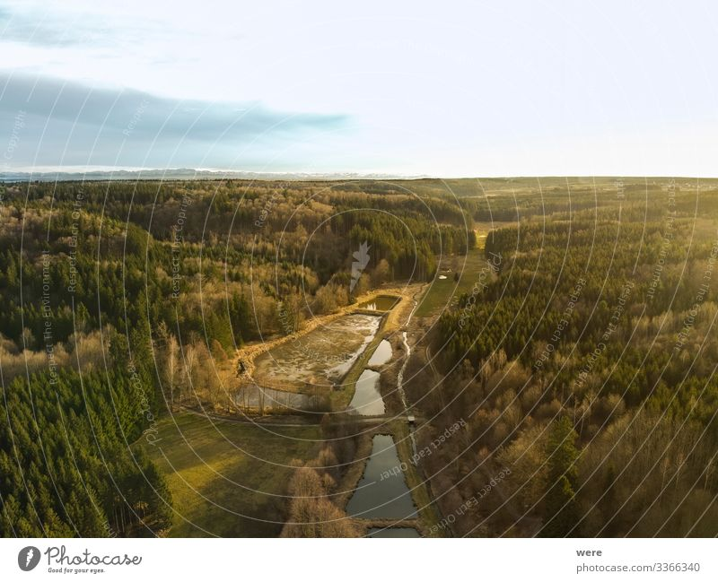 Bird's-eye view of Augsburg's Western Forests Nature Landscape Hill Gigantic Augsburg Western Forests Burgwalden fish farming animal bird copy space
