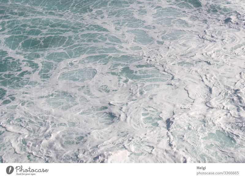 raging sea with foam formation in the Atlantic Ocean Environment Nature Water Island Tenerife Movement Wet Natural Blue White Bizarre Change White crest Current