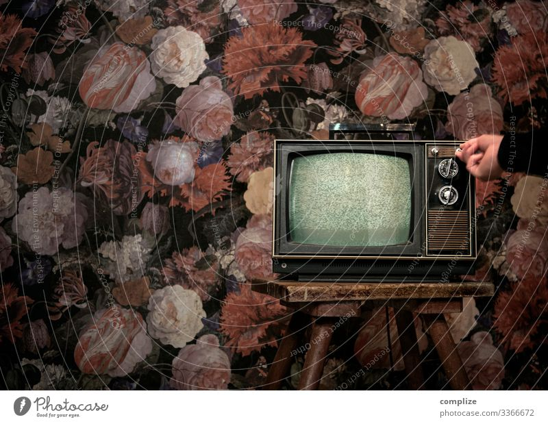 70s television in front of vintage flower wallpaper Style Design Living or residing Flat (apartment) Redecorate Moving (to change residence) Interior design