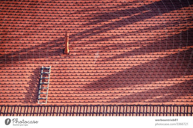 Lonely ladder at the roof top Design Handicraft House (Residential Structure) Craft (trade) Architecture Observe Red Loneliness brick built structure
