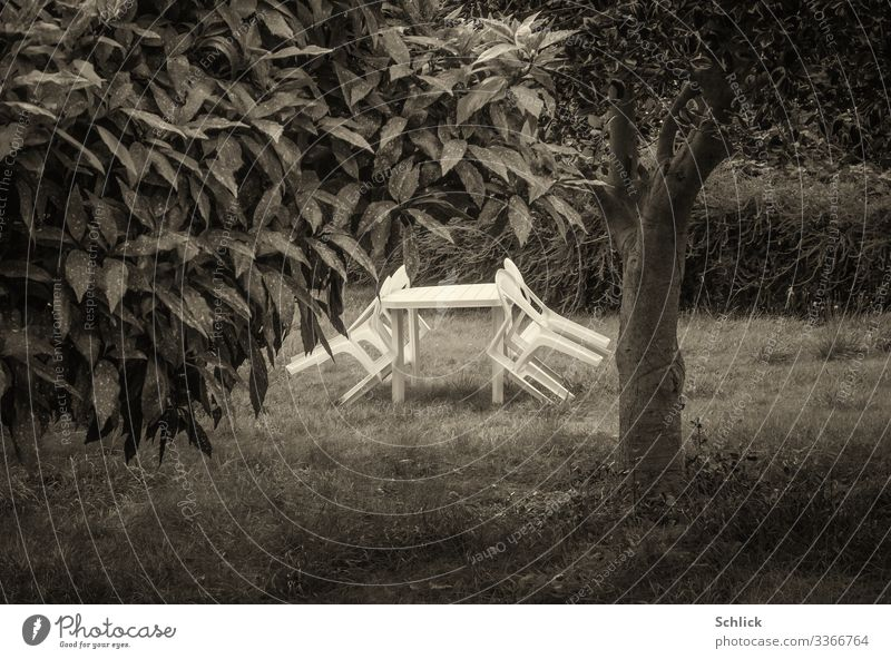 Garden chairs in white plastic leaning against a table on a meadow with a tree in black and white Eating Drinking Relaxation Outdoor furniture Garden table