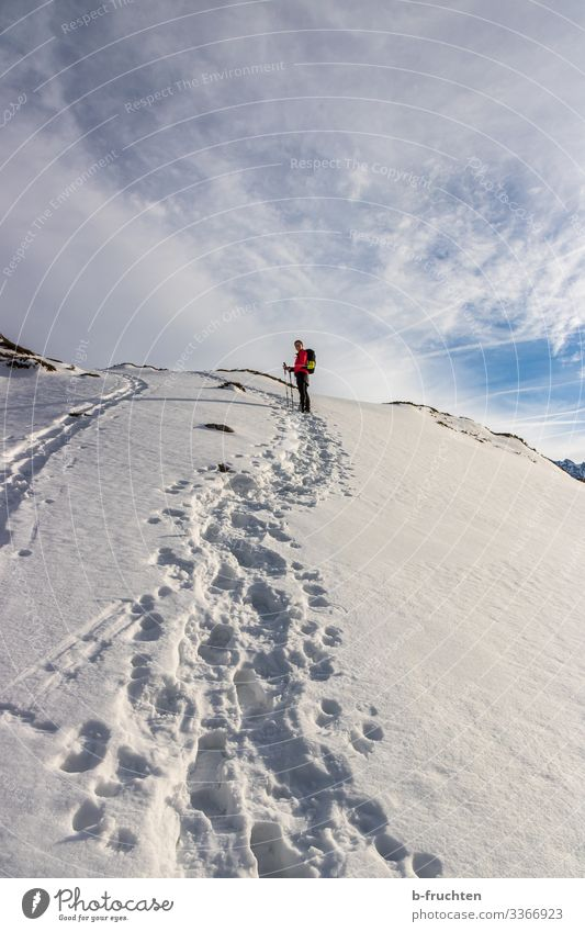 mountain hike Life Leisure and hobbies Winter vacation Mountain Hiking Sports Fitness Sports Training Woman Adults 1 Human being Beautiful weather Snow Alps