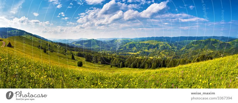 Sunny day panorama of mountain meadow summer mountains sunlight clouds ecology hill valley road picturesque countryside green village rural journey scenery