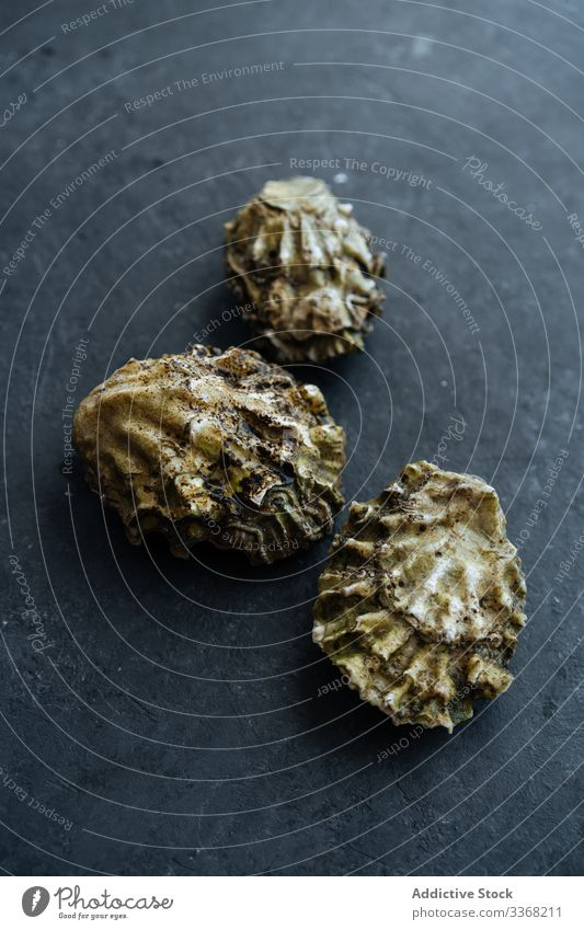 Raw clams on black table seafood raw restaurant ingredient shell closed dirty dark fresh uncooked preparation mussel edible rough grunge exquisite tasty