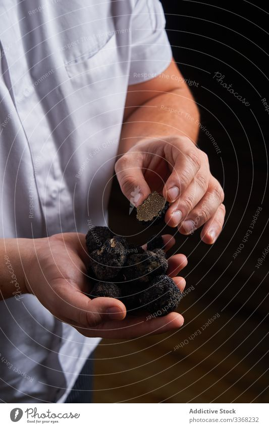 Crop chef showing fresh truffles ingredient handful preparation cook cuisine man food luxury exquisite meal expensive gourmet lunch dinner whole black