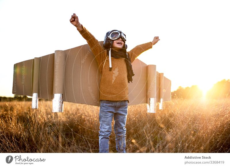 Cheerful little boy playing aviator game in countryside dream kid goggles wing cardboard child male costume son childhood imagination pilot inspiration