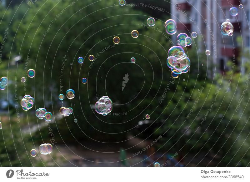 blow bubbles out of the window Window Air bubble Flying Joy Light (Natural Phenomenon) Bright Glittering Round Beautiful Close-up Soap Soap suds closed Playing