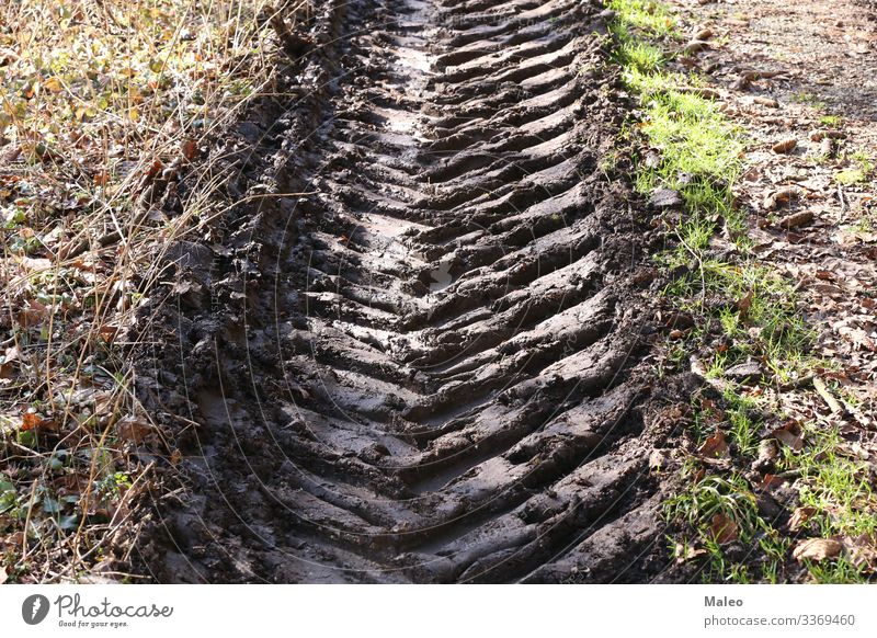 Tread marks on a dirty road Car Dirty Field Landscape Pattern Street Tracks Profile Tire tread Vehicle Background picture Earth Territory Structures and shapes