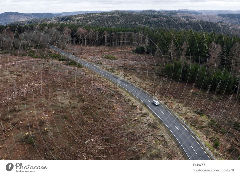 #Car on road from up in the woods Winter Environment Nature Landscape Plant Forest Transport Means of transport Traffic infrastructure Motoring Street Vehicle