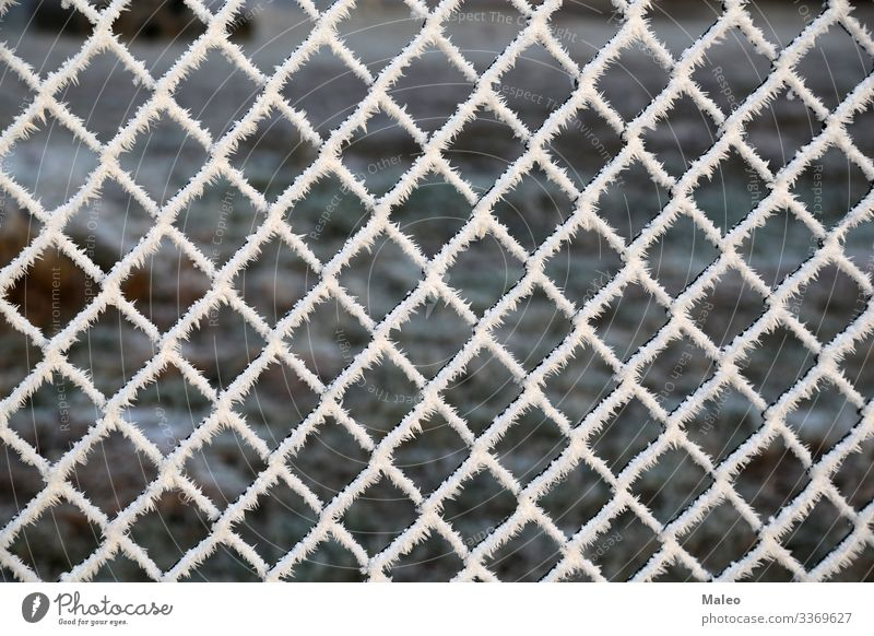Metal net with hoarfrost Abstract Background picture Barrier Border Close-up Cold Construction Ice crystal Snow crystal Detail Fence Frost Grating Hoar frost