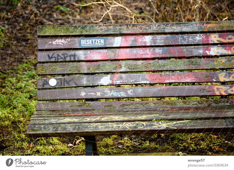 invitation to linger Park Bench Park bench Wood Signs and labeling Graffiti Free Multicoloured Green Calm Garden bench Seating Empty Label Fill Sit down