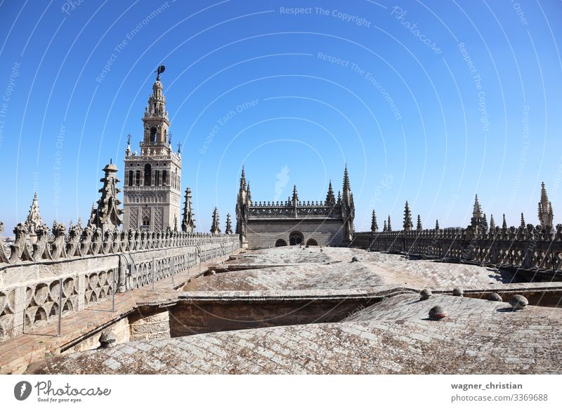 Giralda Tower + Seville Cathedral Roof Vacation & Travel Tourism Sightseeing Church Dome Gateway Arch Bell Tower Tourist Background picture Gothic period