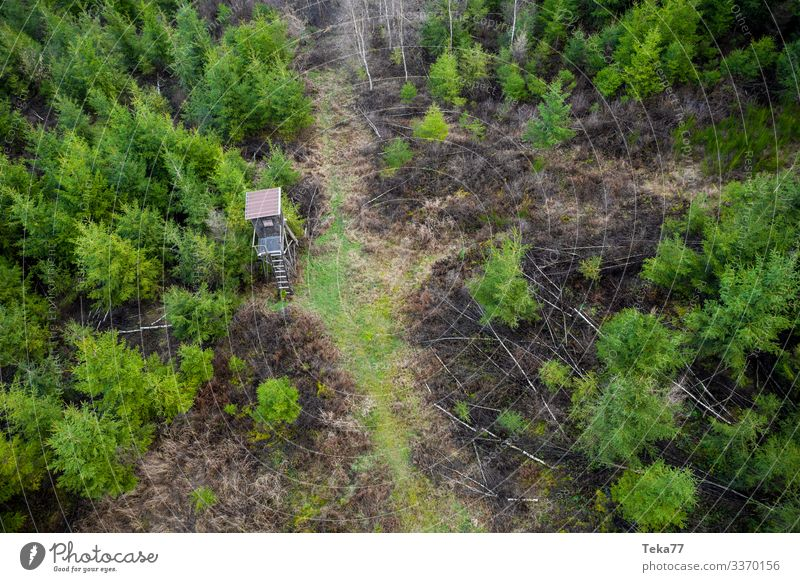 #High seat in the forest from above Winter Environment Nature Landscape Field Forest Esthetic Hunting Animal Hunting Blind Aerial photograph Colour photo