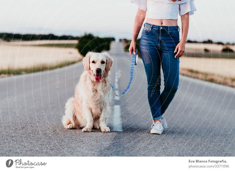 young woman standing outdoors with beautiful golden retriever dog. summer time road street urban countryside field sunset walking happy training labrador