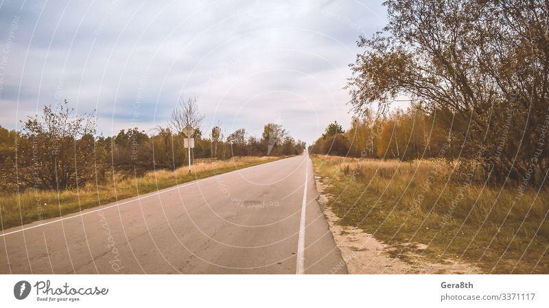 empty road to Chernobyl in Ukraine Nature Landscape Plant Sky Clouds Horizon Autumn Tree Grass Forest Street Natural Dangerous Disaster Colour Pripyat Ukraine