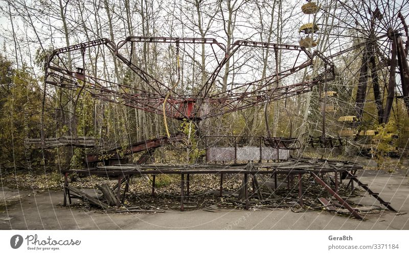 carousel in an abandoned amusement park in Chernobyl Plant Earth Tree Old Gloomy Dangerous Disaster Ukraine abandoned park accident Amusement Park attraction