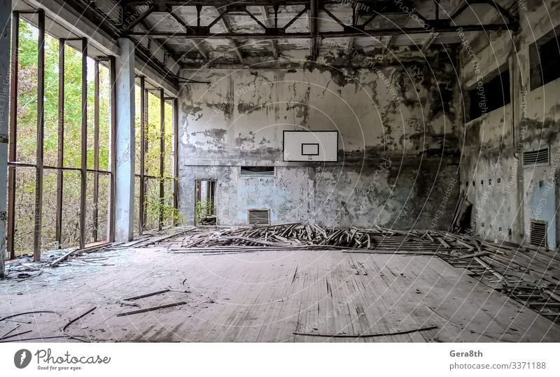 ruined gymnasium in an abandoned school in Chernobyl Plant Tree Old Dangerous Destruction abandoned city Game board contamination destroyed floor Ecological