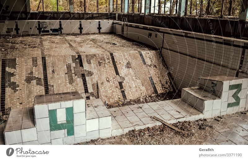 abandoned pool in Chernobyl Ukraine Swimming pool Plant Autumn Tree Leaf Old Acceptance Dangerous Environmental pollution Destruction accident broken