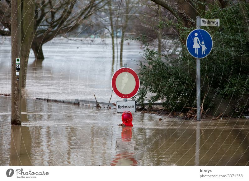 Country under Water Autumn Winter Climate change Bad weather Rain Tree Park Lanes & trails Road sign Footpath Sign Characters Signage Warning sign Authentic