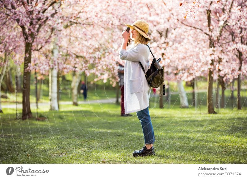 Woman in straw hat traveling in park with cherry trees Adventure Back Flower Blossom Cherry Discover Finland Garden Helsinki Japan Japanese Landscape Location