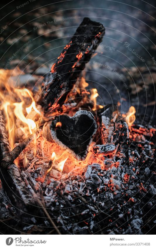 heart in flames Wood Love Fireplace Heart Flame Coal Hot Burn Romance Colour photo