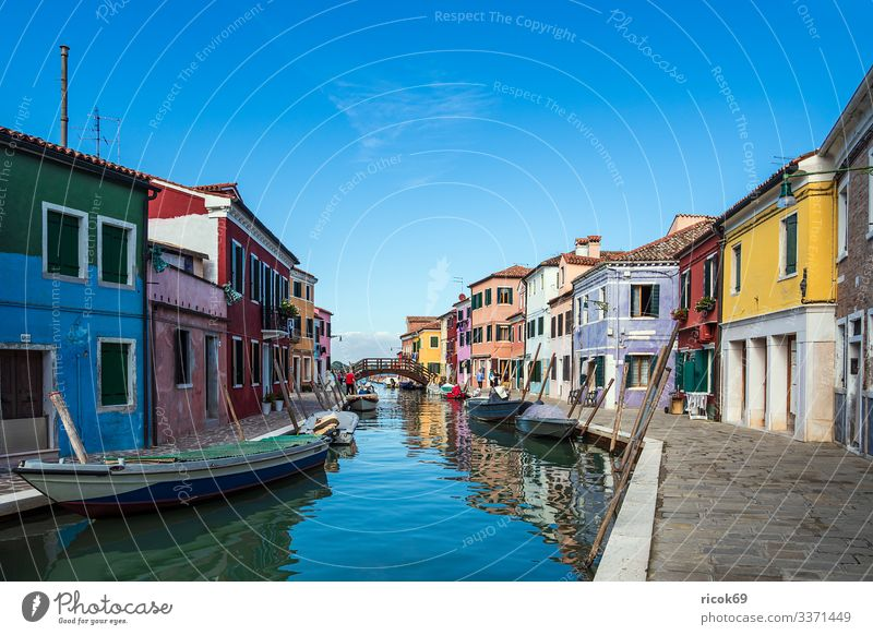 Colourful buildings on the island of Burano near Venice, Italy Relaxation Vacation & Travel Tourism Island House (Residential Structure) Water Clouds Tree Town