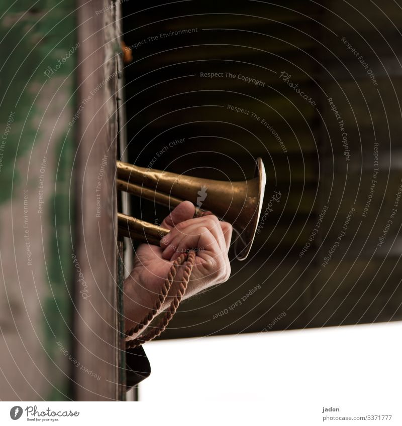 noise | open air concert. fanfare shot Wind instrument Brass band music Music Colour photo Musician Musical instrument Stage Art Shadow cord Outdoor festival