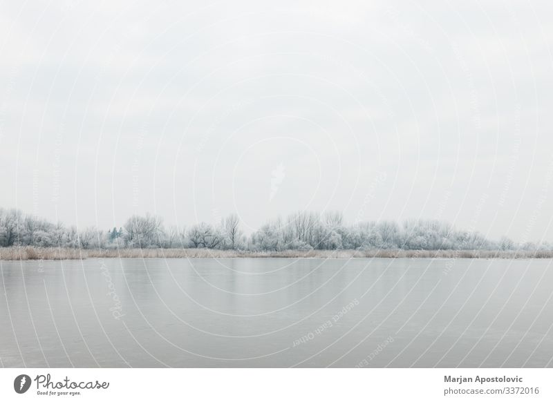 Landscape of a frozen lake in winter morning Environment Nature Plant Water Sky Winter Climate Weather Ice Frost Tree River bank Pond Lake Cold Natural Wild