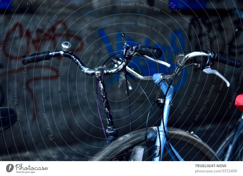 PPNV* After Hours Meeting Lifestyle Elegant Design Athletic Night life Going out Flirt Bicycle handlebars Graffiti Wall (barrier) Wall (building)