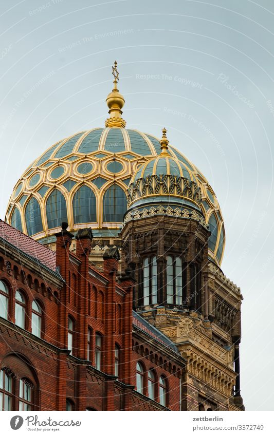 New synagogue Architecture Berlin City Germany Worm's-eye view Capital city House (Residential Structure) Sky Heaven Downtown Downtown Berlin Skyline Tourism