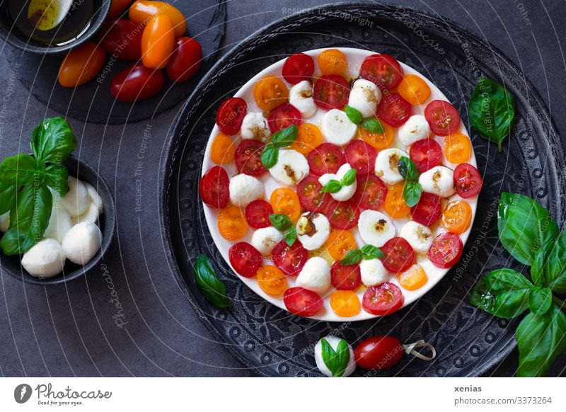 Salad with tomato, mozzarella and basil arranged in a pattern on a white plate Food Vegetable Lettuce Herbs and spices Cooking oil Tomato Mozzarella Basil