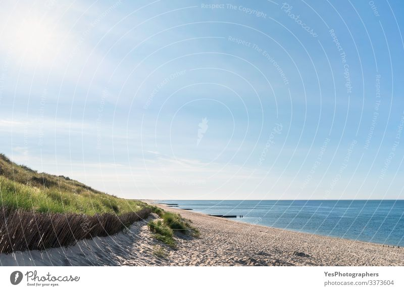 Beach scenery with grassy dune at the North Sea on Sylt Relaxation Summer Sun Ocean Sand Beautiful weather Coast Happiness Joie de vivre (Vitality)