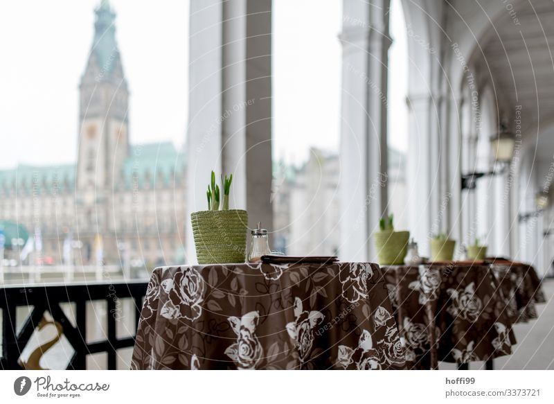Bar tables under arcades high table Table Flowerpot Spring flowering plant Arcade Decoration Architecture Symmetry Column Shallow depth of field Facade